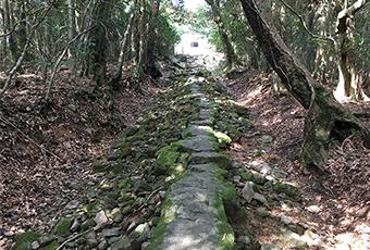 安満岳頂上への参道