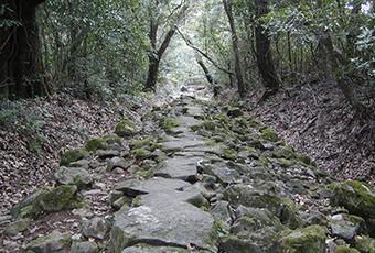 安満岳へ上る登山道