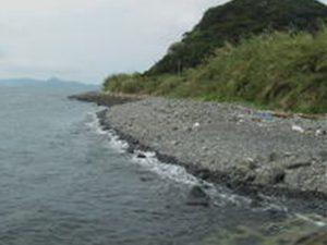 戸田海水浴場