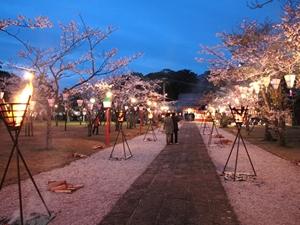 亀岡公園(亀岡神社)